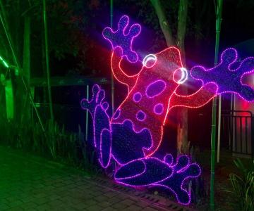 Con la Alborada Cultural la Alcaldía de Medellín dará la bienvenida a la navidad